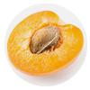 Aprikoskjerne